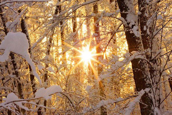 Сезон «Дунчжи» («Зимнее солнцестояние»)