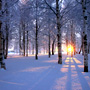 Сезон «Дасюэ» («Большие снега»)