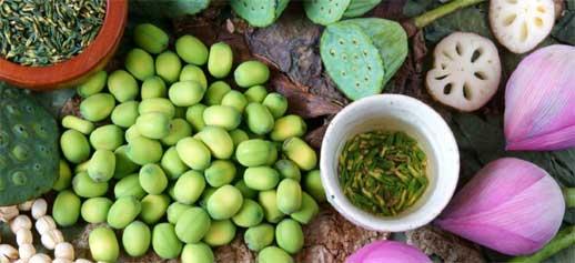 Семена лотоса Лянь Цзы 莲子