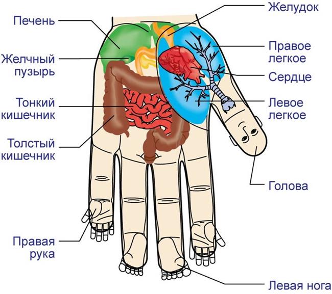 su-dzhok